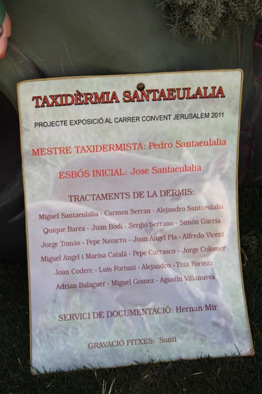 Falla Convento 2011 (139)
